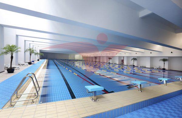 Khu bể bơi tỉnh Phú Thọ sau khi bàn giao